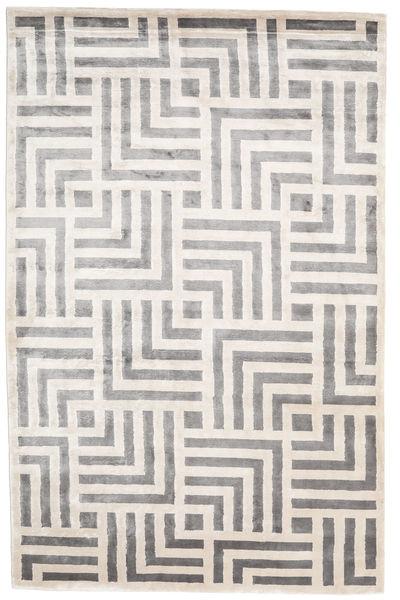 Maze Covor 200X300 Modern Lucrat Manual Gri Deschis/Bej-Crem ( India)