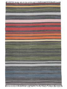 Rainbow Stripe - Gri Covor 140X200 Modern Lucrate De Mână Gri Închis/Verde Oliv (Bumbac, India)