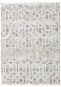Covor Exterior Trinny - Maro/Nature Covor 170X240 Modern Lucrate De Mână Gri Deschis ( India)