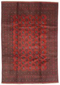 Afghan Covor 200X288 Orientale Lucrat Manual Roșu-Închis/Maro Închis (Lână, Afganistan)