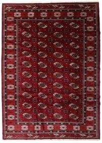 Turkaman Covor 204X285 Orientale Lucrat Manual Roșu-Închis/Maro Închis (Lână, Persia/Iran)
