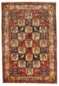 Bakthiari Collectible Covor 212X311 Orientale Lucrat Manual Roșu-Închis/Maro Închis (Lână, Persia/Iran)